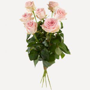 Losse rozen roze